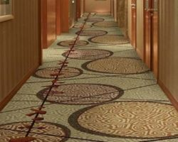 Pro Carpet Inc. of Rochester, Tampa and Pittsburgh are specialists in cost-effective, long-wearing floorcovering solutions for entertainment venues, casinos, concert halls, hotels and hospitality facilities