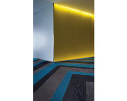 Pro Carpet Inc. of Rochester, Tampa and Pittsburgh are specialists in cost-effective, long-wearing paint and wallcovering solutions for residential, industrial, commercial, educations, healthcare and hospitality facilities