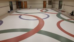 Hornell-rings-3 Pro Carpet Inc. of Rochester, Tampa and Pittsburgh are specialists in cost-effective, long-wearing tile, composite and carpet floorcovering solutions for educational facilities