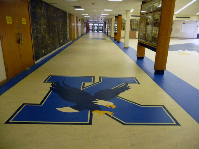 commercial, carpet, floor, covering, vinyl, hardwoods, laminate, rochester, syracuse, albany, new york, pittsburgh, pennsylvania, ohio, washington, dc, virginia, maryland, upstate, metro, healthcare, education, institutional, industrial, sustainability, green, installation, design, tiles, squares, corporate, carpeting, educational flooring